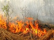 Якутская природоохранная прокуратура разъясняет: не становитесь виновниками лесных пожаров!