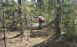 В городском парке культуры и отдыха проводится акарицидная обработка зеленых насаждений