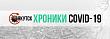 Городские библиотеки запустили портал «Хроники COVID-19. Якутск»