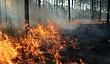 Особый противопожарный режим на территории Якутска продлен до 27 июля