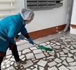 Проведение санобработки подъездов жилых домов в Якутске на 18 часов 13 июля