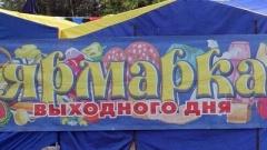 Начался прием заявок на участие в «Ярмарке выходного дня»