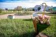 Год труда: тысячи цветов Гагаринского округа встречают горожан и гостей столицы
