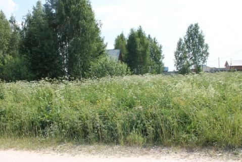 В Якутске к реальному лишению свободы осужден мужчина за совершение мошенничества с земельными участками