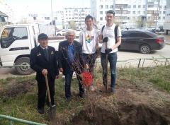Год Добра: Добровольцы столицы продолжают оказывать адресную помощь