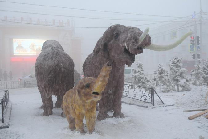 Жителей Якутска приглашают принять участие в фотоконкурсе «#ЗимаСемья2020»