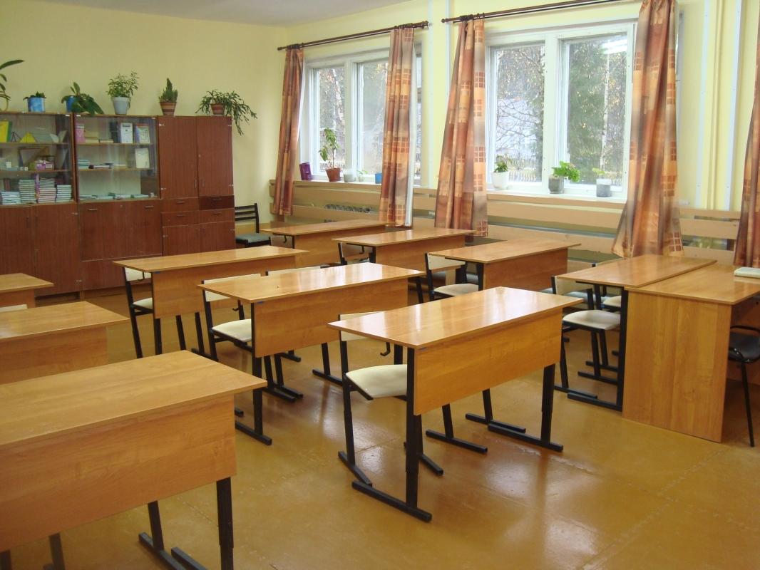 Учащиеся городских школ, кроме 9 и 11 классов, будут переведены на дистанционную форму обучения