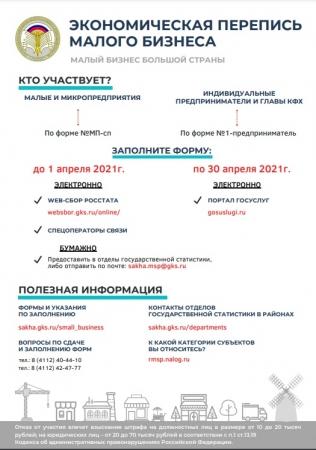 """Экономическая перепись малого бизнеса """"Малый бизнес большой страны"""""""